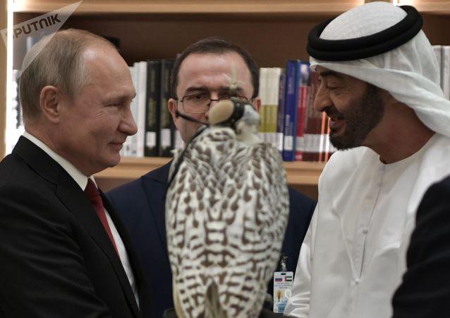 俄自然資源部發佈普京贈禮——堪察加獵鷹破殼視頻