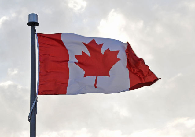 加拿大外交部:暂时停止对土耳其军售