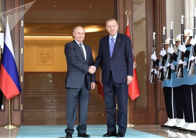 普京與埃爾多安會晤