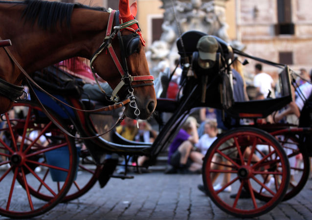 罗马动物保护人士呼吁禁止使用观光马车