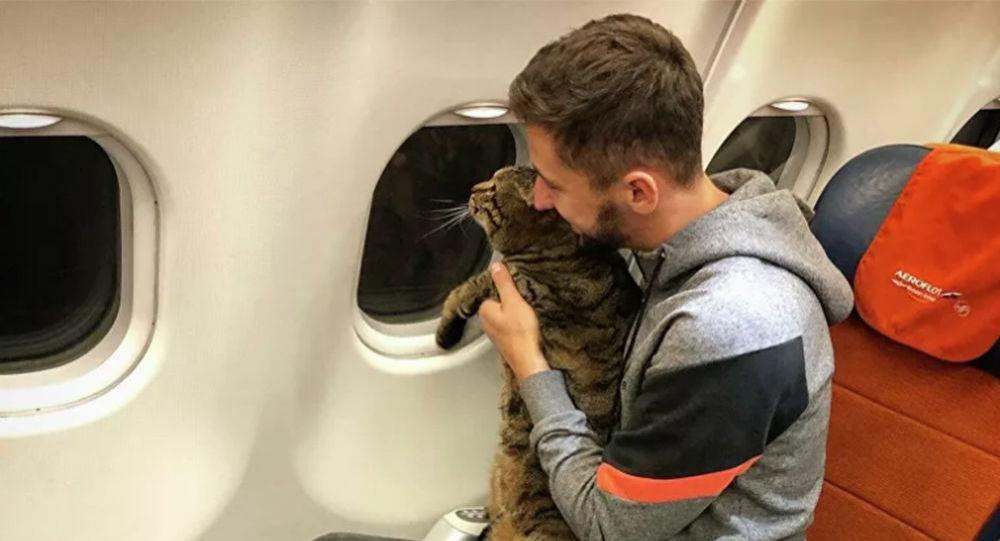 男子因貓肥被拒登記