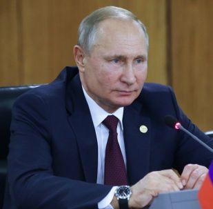 克宫:普京在金砖峰会上谈到军控问题