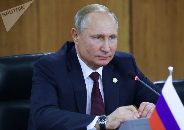 普京表示,尽管全球经济指数呈下降趋势,但俄罗斯经济保持着积极态势