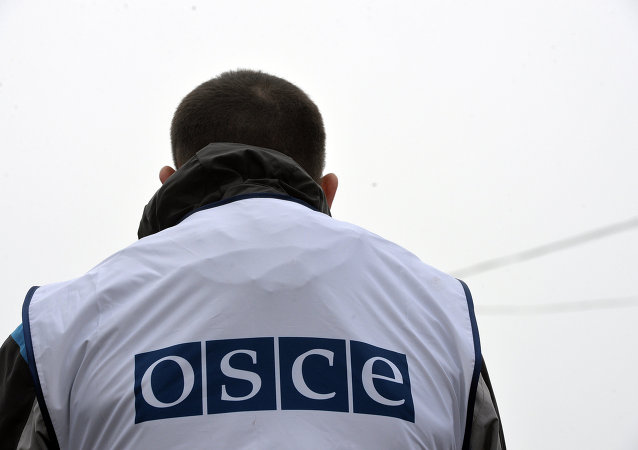 俄羅斯贊成將歐安組織駐烏代表團任期延長一年