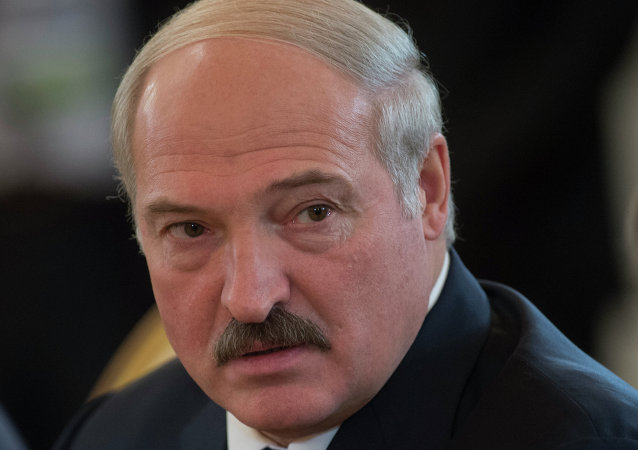 白俄总统:白俄逮捕数十名准备挑衅的武装分子