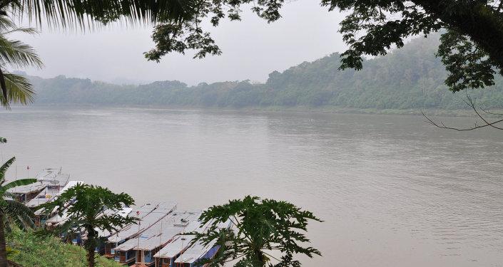俄專家:為解決共同問題大湄公河次區域國家必須制定統一髮展計劃