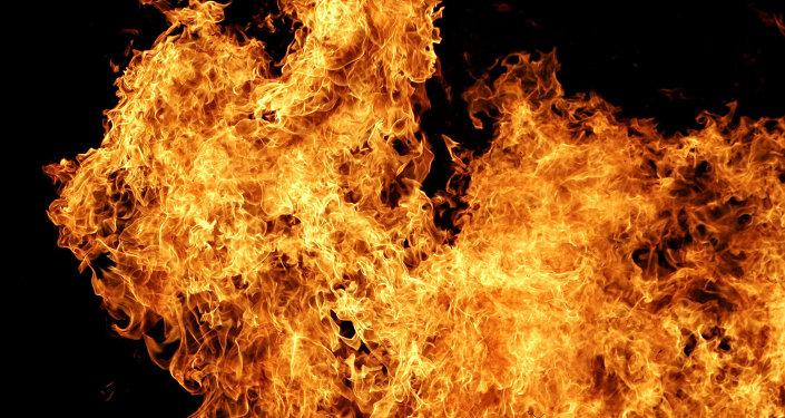 媒体:约200名消防员正在扑灭法国南部的新火灾