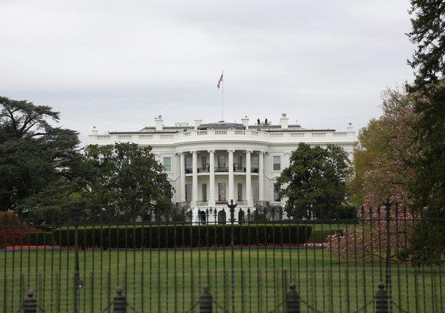 白宫:尚未决定在汉堡G20峰会期间举行普京与特朗普的会晤