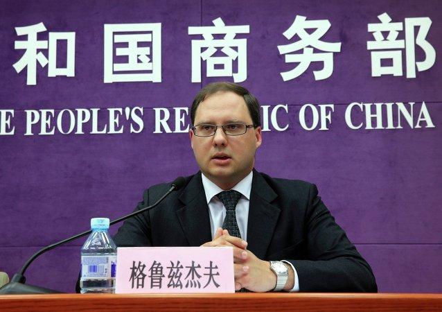 俄罗斯驻华商务代表阿列克谢·格鲁兹杰夫