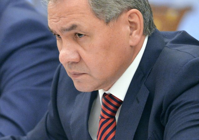 俄防長:俄或在半年內起訴法國不支付航母