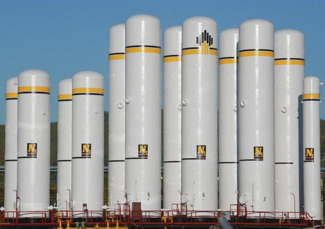 消息人士:俄石油股权交易与欧佩克减产协议无关