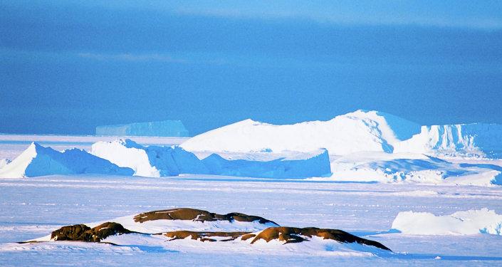 無人機拍下了南極洲冰架的巨大裂縫