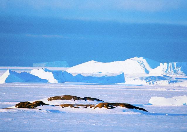 无人机拍下了南极洲冰架的巨大裂缝