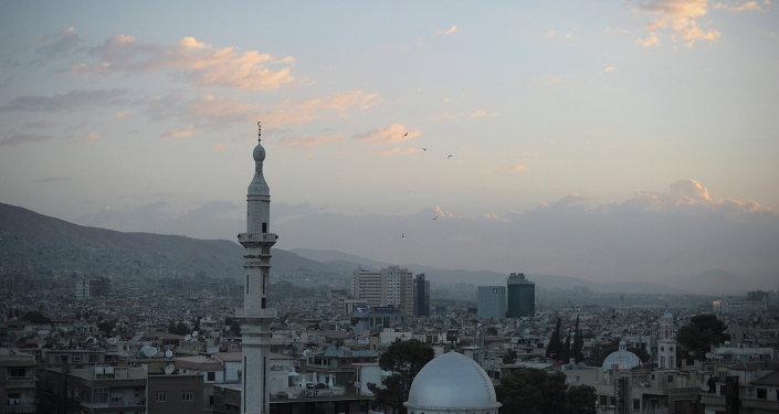 敘利亞代表團團長歡迎敘利亞問題莫斯科磋商成果