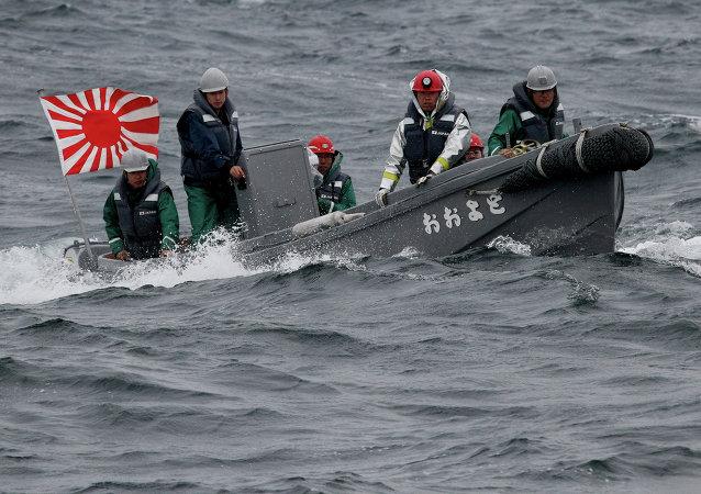 大量朝鲜渔船被洋流带到日本沿岸
