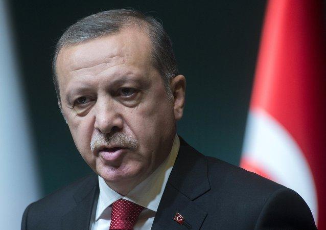埃爾多安:土軍行動目標是清除「伊斯蘭國」和敘庫爾德人的威脅