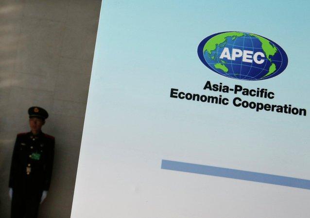 亞太經合組織商定成立自貿區創建戰略分析工作組
