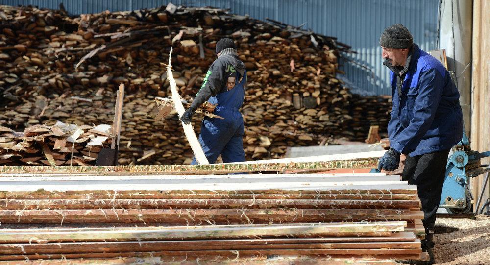 黑龙江松林公司将在俄投资建设木材加工厂
