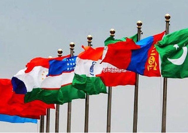 上合组织:上合组织成员国将在乌法通过反法西斯战争胜利70周年声明