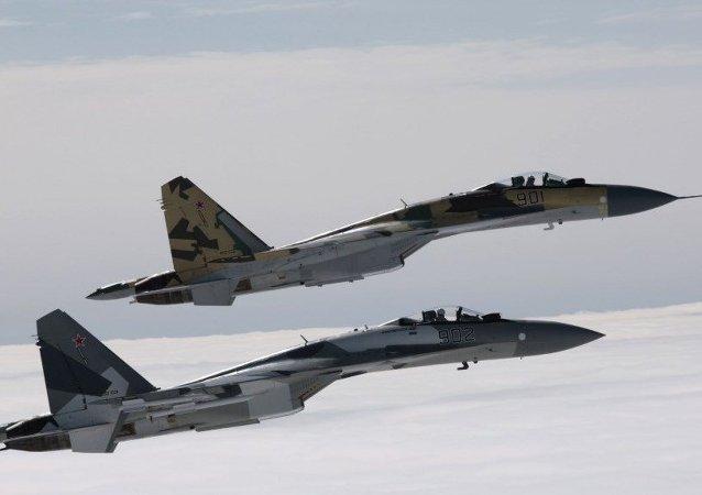俄空天军:苏-35歼击机将在赫梅米姆基地进行24小时值勤