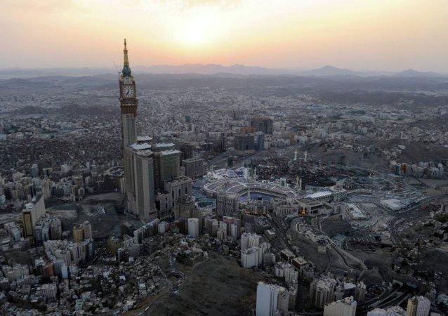 前美驻联合国代表:沙特已承认资助极端主义组织