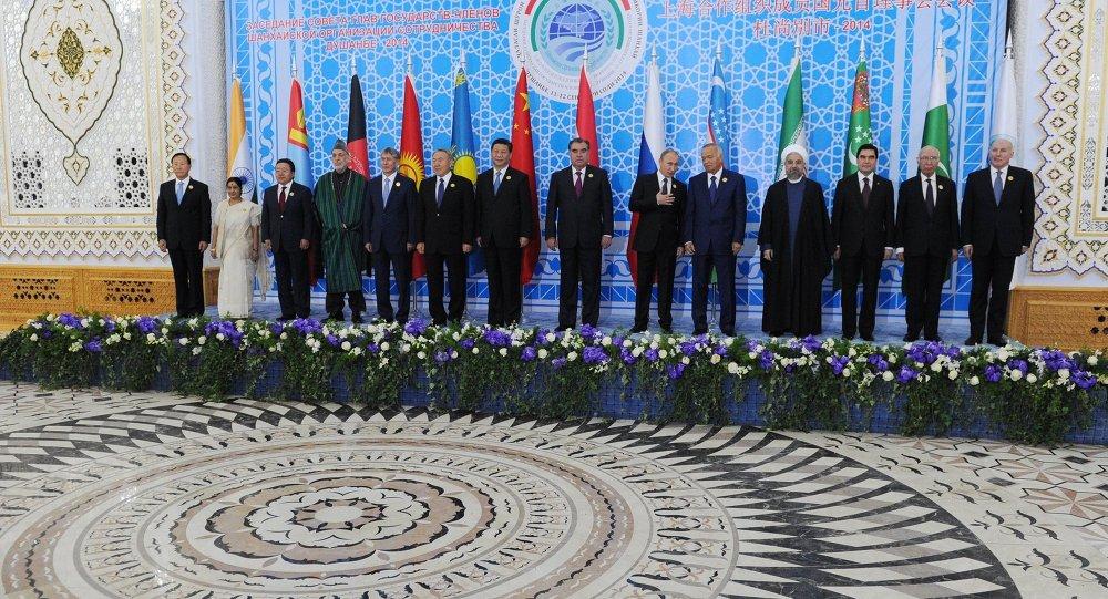 上合成员国总统(图片资料)