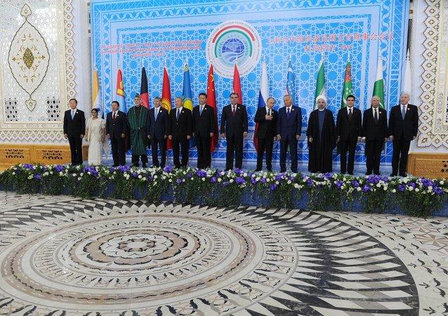中国代表团长:上合成员国局势稳定归功于组织本身