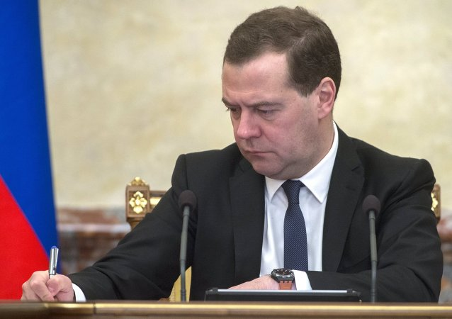 """俄总理批准""""工作在俄罗斯""""人才网构建规则"""