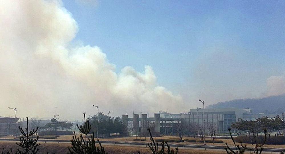 朝韩边境的非军事区发生火灾