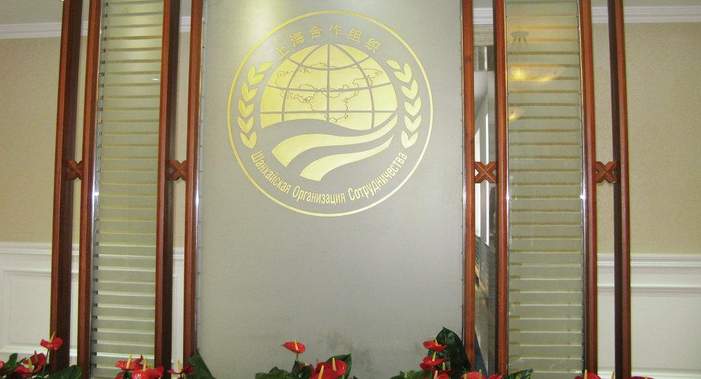 上合组织派代表监督白俄罗斯议会选举