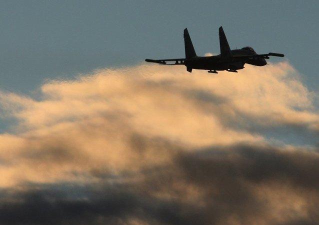 俄专家:台湾不要指望俄罗斯帮它制造第五代战机