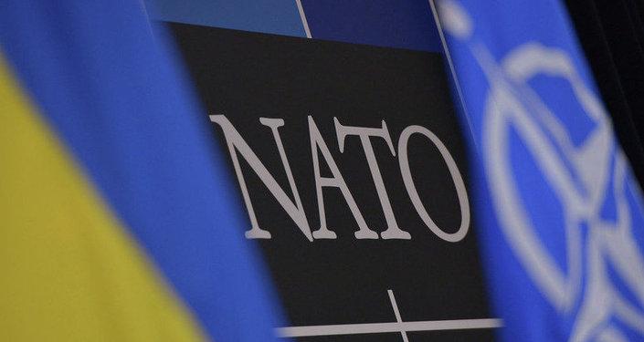 烏克蘭最高拉達通過新法 重申加入北約和歐盟意願
