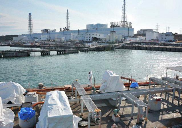 """日本因过度自信而没有准备好应对""""福岛""""核电站事故"""