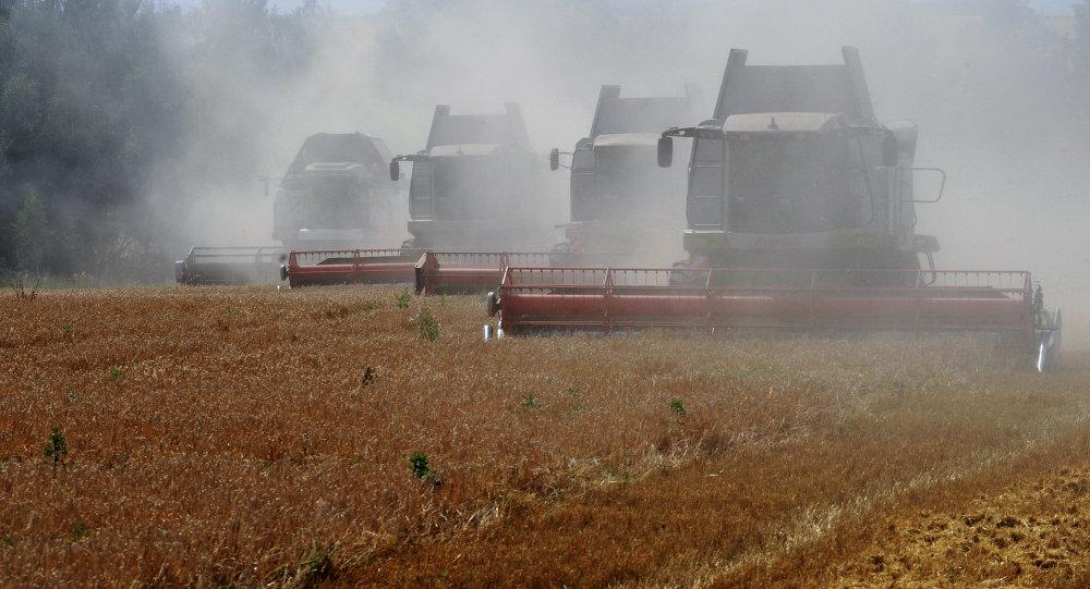 中资银行或将以6%的年利率向俄远东农业项目贷款