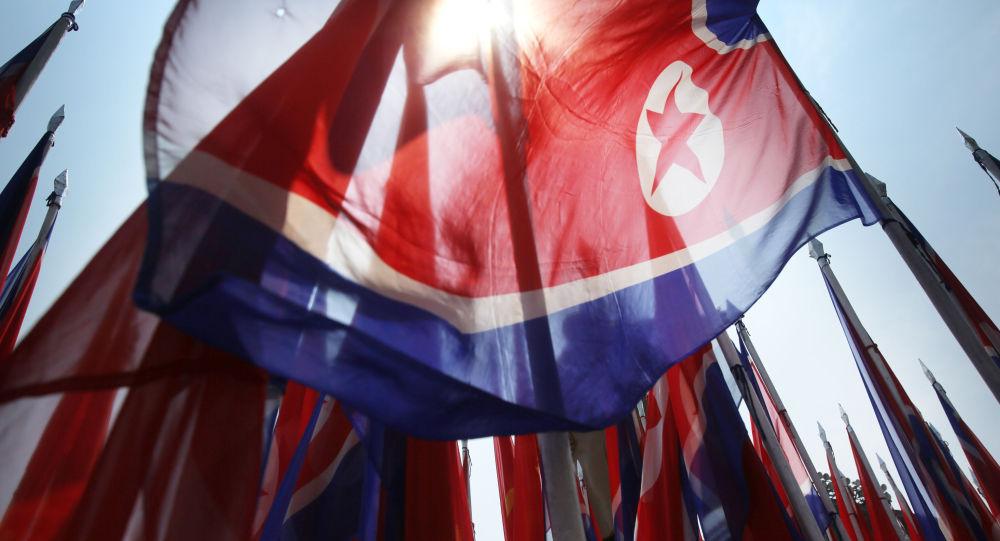 朝鲜外交官:平壤认为温哥华朝鲜问题会议是挑衅