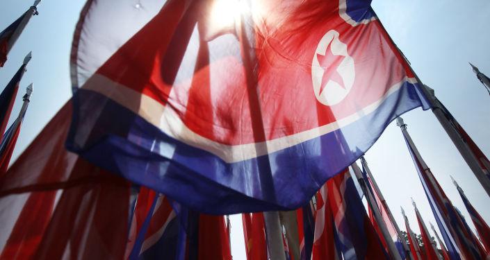 俄联邦委员会代表团拟于3月赴朝鲜访问