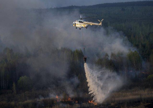 切爾諾貝利核電站隔離區內的火災已被撲滅