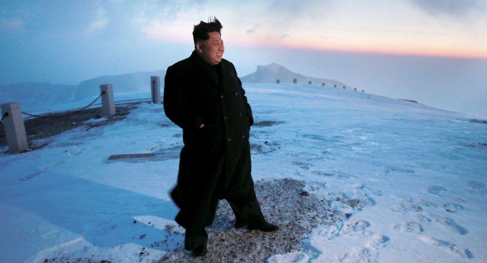 中國專家:金正恩放棄出席俄紀念二戰活動或因俄朝合作等原因