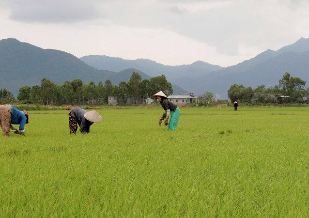 媒體:越南一個村的村民釋放被扣為人質的警方人員