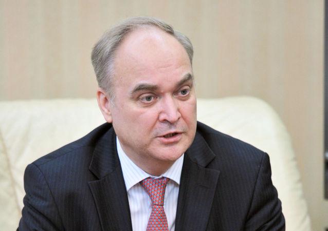 俄驻美大使:英国情报机构参与准备在伊德利卜发起使用化武的挑衅