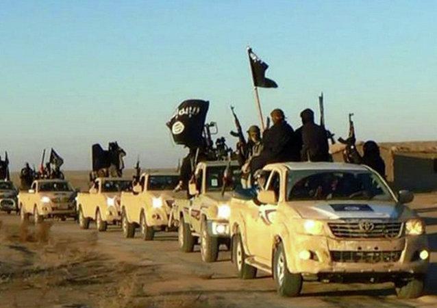 美国关注伊斯兰国从何处获得大量丰田越野车