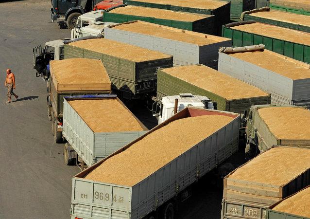 俄車里雅賓斯克州三家企業計劃向中國出口糧食