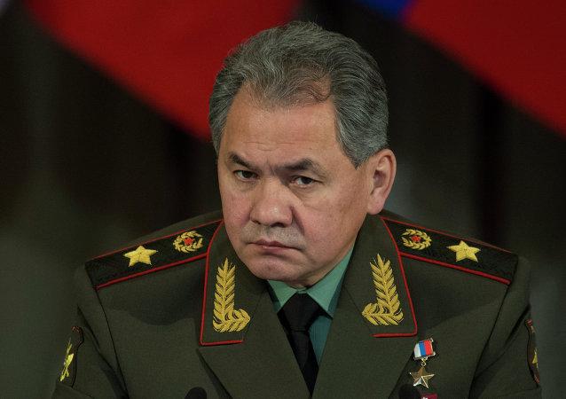 俄国防部长主张在东盟框架内发展对话