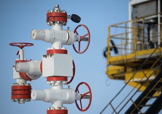 俄安全会议:外国限制向俄供应燃料能源综合体设备技术的危险切实存在