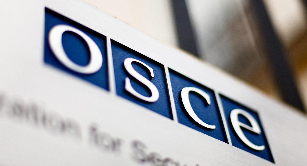 乌侵犯人权情况未获欧安组织应有评价
