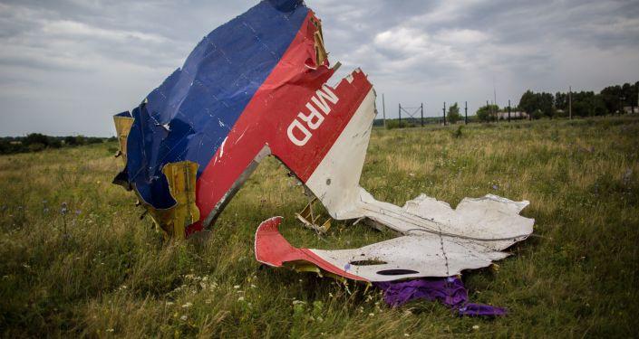 美国与荷兰讨论马航MH17空难