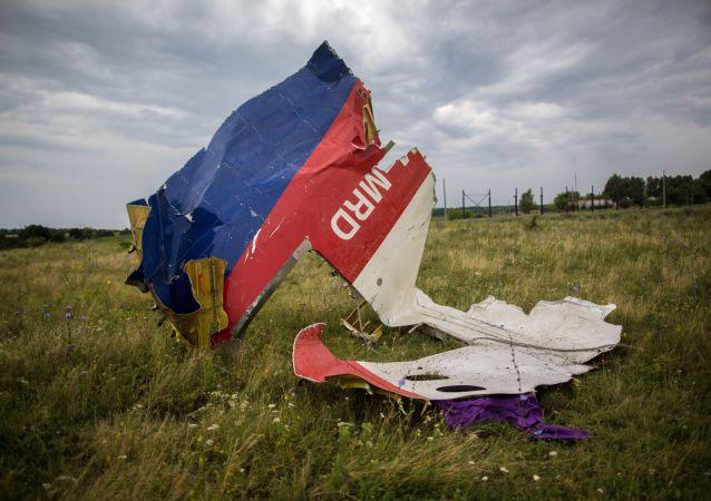 顿涅茨克已向荷兰转交马航坠毁波音客机遇难者遗体