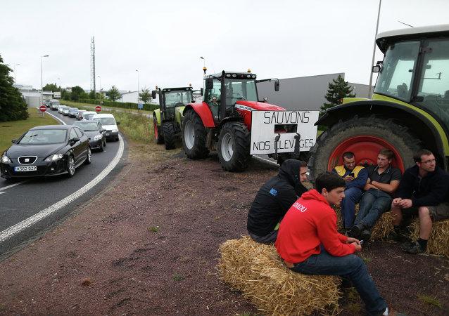 媒體:法國農民因受俄制裁罷工