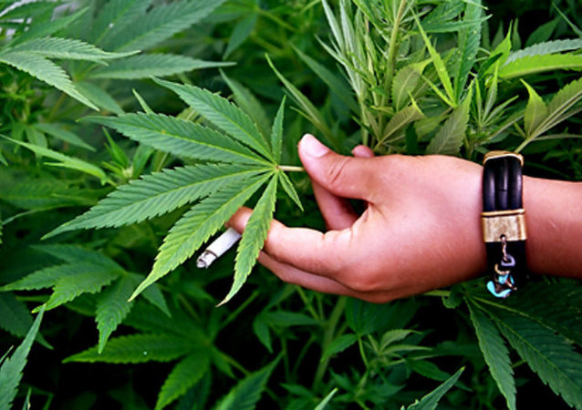 以色列政府批准使用大麻非刑罰化