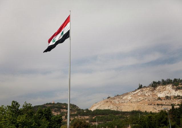媒体:叙国际支持小组北京时间23日凌晨2时将举行会议